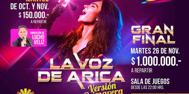 Vocea Arica: Concurs de cântece